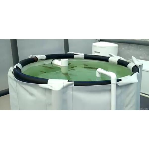 Aquaponics Fish Tank - 1000 liters capacity
