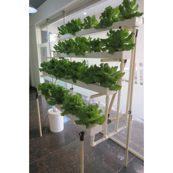 Hydroponic Balcony Grow stand - 52 plants