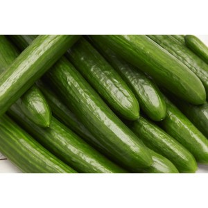 Cucumber special Mix Nutrients - 500 Liters