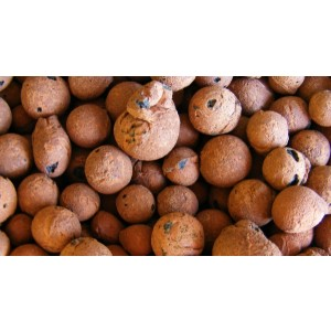 Expanded Clay Pellets (1 kg, 8-16 mm)