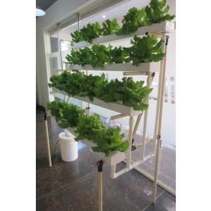 Hydroponic Balcony Grow stand - 52 plants