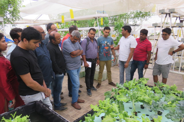 hydroponics & aquaponics training classes in india